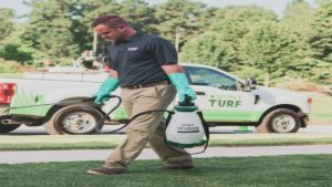 Why Hire the Best Lawn Maintenance Company in Fayetteville, GA?