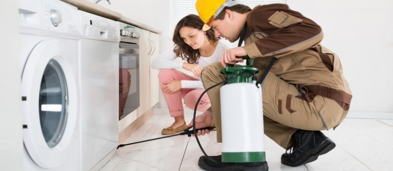 Tips for Picking the Best Residential Pest Control in Newnan GA