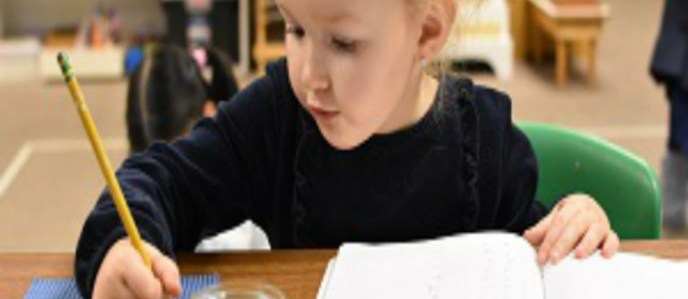 Find a Charter School in Bloomington, MN That Suits Your Child's Needs